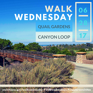 Walk Wednesday- Quail Gardens Canyon Loop
