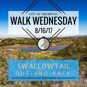 Walk Wednesday- Swallowtail Out-And-Back
